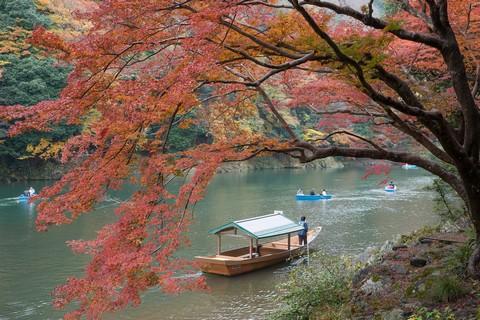3_京都保津川紅葉(嵐山)_Nikon_20161120_524.jpg