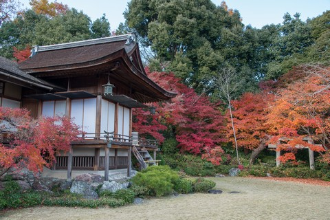 3_京都大河內山莊(嵐山)_20131128_190.jpg