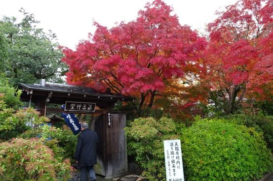 3_京都西山草堂(嵐山)_Sony_20161120_354.jpg